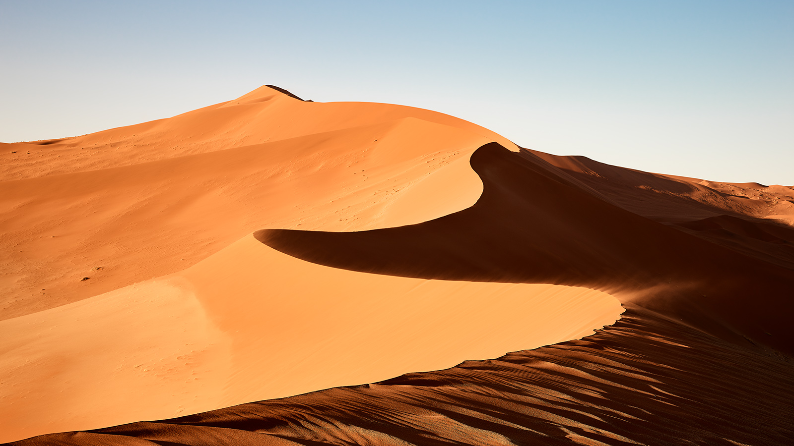 Dune 45 169 WEB